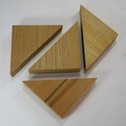 画像4: アガチス 三角形 大 (12入り) 【限定】