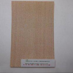 画像5: ツキ板シート・オーク(Oak) 0.2×195×295mm【WEB限定】