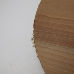 画像4: カツラ 円板 29×300φmm 【WEB限定】
