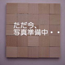画像1: レーザーカットパーツ 円板 ウォールナット 5×20φmm(20ヶ)【WEB限定】