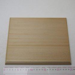 画像4: アガチス飾り台 20×200×250mm【WEB限定】